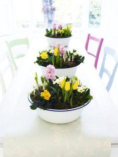 Lente in emaillen schalen... mooi voor Pasen