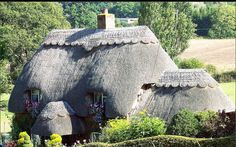 Love the thatched roof. Never mind about how hard they are to maintain!