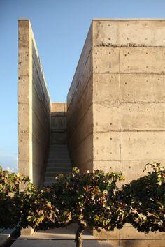 Vinícola Cuna de Tierra / winery @ Guanajuato, Messico - 2013 by Centro de Colaboración Arquitectónica