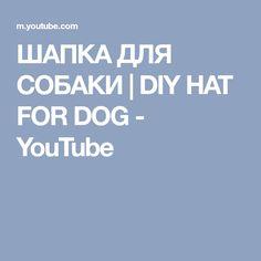 ШАПКА ДЛЯ СОБАКИ | DIY HAT FOR DOG - YouTube