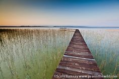 The huge iSimangaliso Wetland Park in KwaZulu-Natal is a truly impressive stretch of land, ocean and fresh water lakes and rivers. Three Lakes, Wetland Park, Kwazulu Natal, Water Photography, African Safari, Fresh Water, South Africa, Waterfall, Ocean