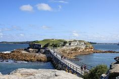 One of our favourite dive sites!  Bare Island - La Perouse