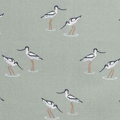 Coastal Birds by Sophie Allport - Fabric Hall Curtains, Caravan Curtains, Feature Wallpaper, Love Wallpaper, Roman Blind Fittings, Made To Measure Curtains, Fabric Birds, Buy Fabric, Roman Blinds