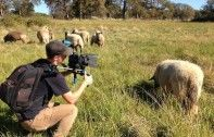 Q&A with Brainchild Behind Groundbreaking Doc 'Cowspiracy'   Ecorazzi