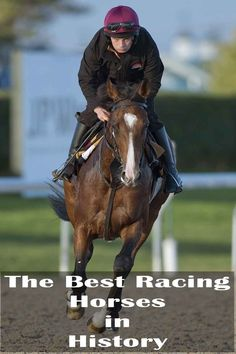 The best racing horses in history - Trivota