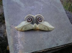 Interesting Owl moth