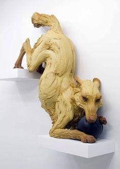 http://www.walesonline.co.uk/incoming/gallery/international-ceramics-festival-artists-4727208