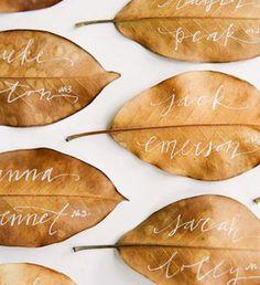 落ち葉のひろいを楽しむ - NAVER まとめ