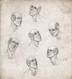 Masculino Patrones anatomía por Snigom en DeviantArt