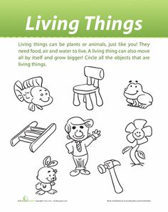 Worksheets Classify Living And Nonliving Things Worksheet science worksheets for grade 1 living and nonliving html characteristics of things on pinterest living