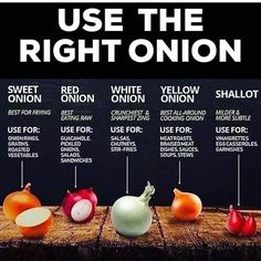 Know Your Onions: Use the Right Onion for the Right Recipe Cooking Tips, Cooking Recipes, Food Tips, Healthy Recipes, Healthy Options, Vegetarian Recipes, Food Ideas, Cooking Onions, Great Recipes