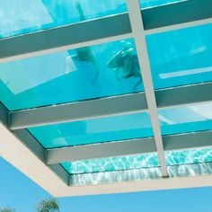 41 Glass Bottom Pool You Should Try Above Ground Pool, In Ground Pools, Glass Bottom Pool, Jellyfish, Cool Stuff, Outdoor Decor, Milk, Design, Home Decor