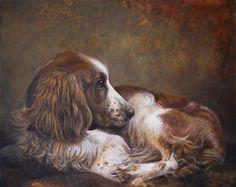 Portrait of a Spaniel - Sophie Ploeg