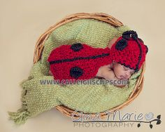 Instant Download Crochet Pattern No.5 Ladybug by calleighsclips