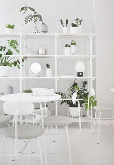 decoración en blanco y las plantas verdes - Byoh barra de matcha por la arquitectura Norma