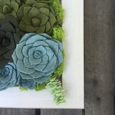 made to order handmade wool felt succulent by goldenafternoonmade