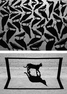 Surreal Shadow Photography