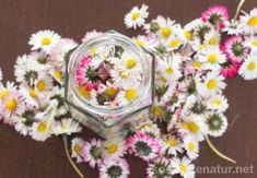 Gänseblümchen-Tinktur – gegen Akne, Mitesser und unreine Haut The daisy contains many valuable ingredients that you can preserve in a tincture and use all year round. Diy Beauty, Beauty Hacks, Lavender Soap, Medicinal Herbs, Natural Cosmetics, Amazing Flowers, Flower Crown, Diy And Crafts, Daisy
