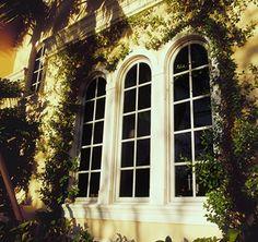 159 Best Andersen Windows And Doors Images Windows Doors