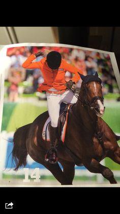 Elaine Pen at the WEG. White Horse Pilot breeches, orange belt