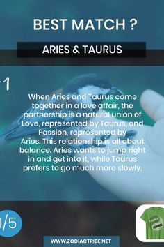 Find your Zodiac Signs Compatibility for all zodiac signs, for couples, relationships and love matches and find your Couple shirts to match. Aries Taurus Compatibility, Aries And Aquarius, Taurus Love, Aquarius Relationship, Capricorn Relationships, Couple Relationship, Find Your Zodiac Sign, All Zodiac Signs, Zodiac Facts