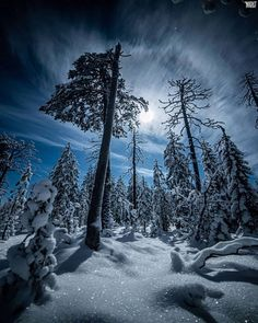 Silent Night, The 4, Moonlight, Around The Worlds, Mountains, Photo And Video, Nature, Painting, Travel