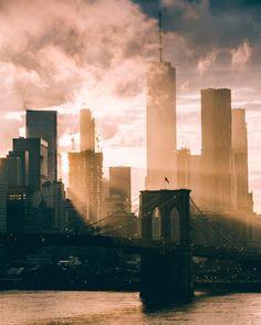 Morning Shines, New York