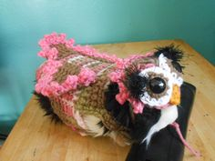 Guinea Pig Owl Sweater and Owl Hat Pink Owl Guinea by Fancihorse Guinea Pig Costumes, Guinea Pig Clothes, Pet Clothes, Baby Guinea Pigs, Owl Sweater, Cold Brew Coffee Maker, Owl Hat, Pink Owl, Coffee Lover Gifts