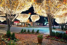 Another pivotal sequence in the book involves Fairhope's Lighting of the Trees Festival, which rings in the holiday season in November. I've been waiting years to fit Lighting of the Trees into a book. Finally found the right one!
