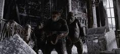 """""""Sota apinoiden planeetasta on koskettavaa scifidraamaa, joka todistaa, että kesän megaleffa voi olla muutakin kuin aivotonta pikselimäiskettä."""" - AL, Muropaketti ⭐⭐⭐⭐½  SOTA APINOIDEN PLANEETASTA elokuvateattereissa 12.7."""