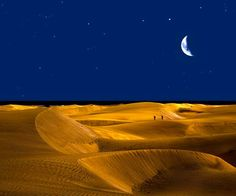 desert during night