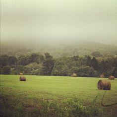 Hartsville TN