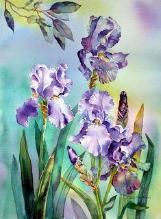 Изумительные акварели Ann Mortimer   800px × 1,088px
