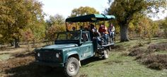 10 planes para viajar con niños en la provincia de Burgos ¡Serán inolvidables!
