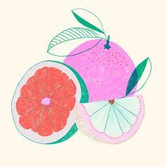 Marisol Ortega - Grapefruit