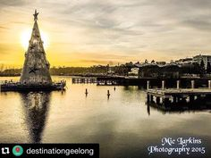 Christmas is coming and the geese are getting fat. But you can counteract all this by signing up to Geelong's 80km extreme arts walk and burn off the Christmas kilos beforehand! Start your #mtomgeelong training regime today. Check out our website http://ift.tt/1PBdU5H for all the #walk info and to register and make sure you visit Geelong's giant Christmas tree when you're next in town! #Repost @destinationgeelong  Christmas Tree in Place Geelong ready for light up on Friday 13/11/2015…