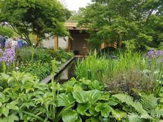 At The RHS Chelsea Flower Show Visitors Can See The Latest Innovations And Garden  Technology And Design, And The Newest Plants.