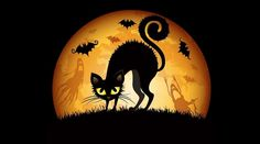 The fear of Halloween is called Samhainophobia. Defined as a persistent, and abnormal fear of Halloween, samhainophobia is a term rooted in ancient pagan traditions. Halloween Silhouettes, Halloween Backgrounds, Halloween Wallpaper, Halloween Clipart, Theme Halloween, Halloween Cat, Halloween Night, Halloween Stuff, Halloween Wishes