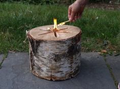 Light 'n Go® Bonfire Log