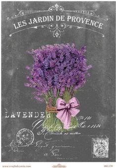 Vintage Pictures, Vintage Images, Etiquette Vintage, Provence Lavender, Foto Transfer, Chalk Paint Projects, Beautiful Flowers Wallpapers, Christmas Swags, Decoupage Vintage
