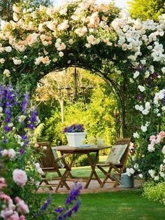 Make nature your centerpiece!  These roses on the arbor are gorgeous and nice touch with the chandelier!!  Georgiafamily.com