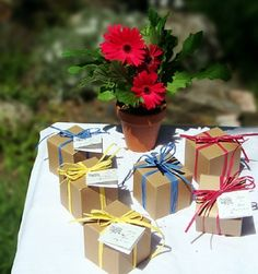 Tree Beginnings is offering 100 eco-chic favors (either flower bulbs in eco gift boxes or gerber daisy seed kits — your choice) to one lucky Plunge Project reader!