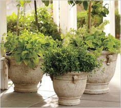 Garden Accents & Garden Ornaments and Accessories Stone Planters, Outdoor Planters, Concrete Planters, Garden Planters, Outdoor Gardens, Planter Pots, Ceramic Planters, Big Planters, Potted Garden
