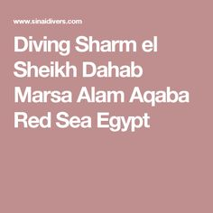 Diving Sharm el Sheikh Dahab Marsa Alam Aqaba Red Sea Egypt