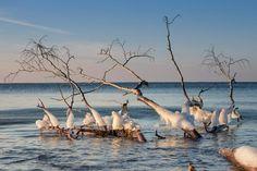 Weststrand Fischland Darß
