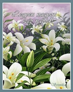Pictures Of Lilies wallpapers Wallpapers) – Art Wallpapers Lily Wallpaper, Pictures Of Lily, Easter Pictures, Butterfly, Framed Prints, Animation, Flowers, Beautiful, Lilies