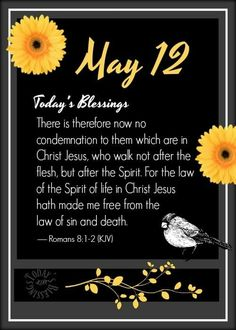 Daily Scripture, Scripture Verses, Bible Verses Quotes, No Condemnation, Welcome May, Daily Word, King James Bible, Good Morning Greetings, Days Of The Year