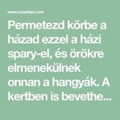 Permetezd körbe a házad ezzel a házi spary-el, és örökre elmenekülnek onnan a hangyák. A kertben is bevetheted! - Tudasfaja.com Pest Control, Organic Gardening, Home And Garden, Cleaning, Cool Stuff, Plants, Diy, Avocado, Homemade