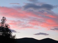 dawn #haiku: hummingbirds chatter/ cherry-colored clouds drift past--/ now, day begins