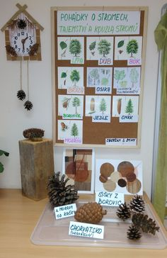 Stromy Forest School, Reggio Emilia, Preschool Activities, Games For Kids, Montessori, Crafts For Kids, Classroom, Science, Teaching